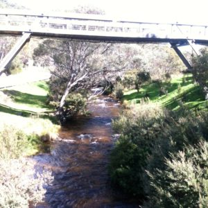 The bridge over Thredbo River